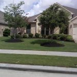 Green-ER Lawns, Trees & Pest, 12 years of experience