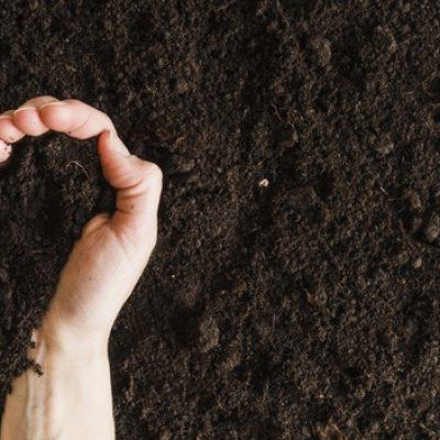 overhead-view-woman-s-hand-holding-soil-heart-shape_23-2148181162